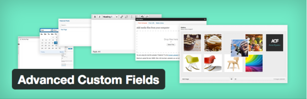 advanced_custom_fields_plugin